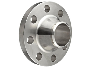 SS Weld Neck Flanges