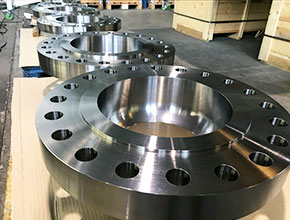 Stainless Steel Raised Flanges